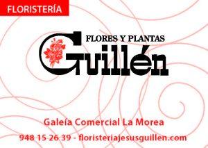 Flores y Plantas Guillén
